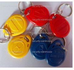 RFID ID 125 KHz Tag Key Ring ID